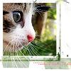 xthe_last_highx userpic