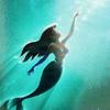 ShadZ: Ariel Poster