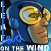 Bug on the wind