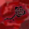 toreador_rose userpic