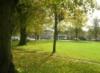 lizatgreenside