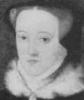 ladyjanegreyref posting in Tudor Roses