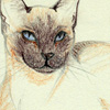 mieze userpic