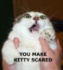 Violet Tigress: scaredy cat