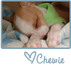sleeping chewie
