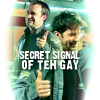 SGA: secret signal (psychofilly)