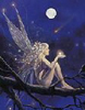 Дева с луной