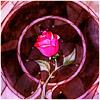 misssiriusblack userpic