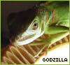 god_zilla userpic