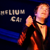 A lady of no particular repute: Helium cat