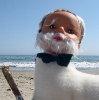 photobooth userpic