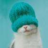 pretty_grin userpic