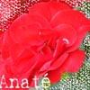 ana_te userpic