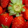 strawberry189 userpic