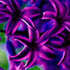 violetiae userpic