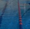 SwimTech [userpic]