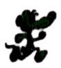 litimor userpic