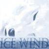 wolfraven80: Wolf's Rain Ice Wind