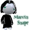 Marvin Snape