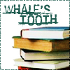 whales_tooth