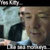 Lex - Sea Monkeys