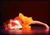 dance, infere