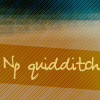 np_quidditch userpic