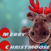 Xmas Moose