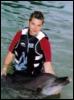 dolphshark userpic