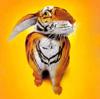 tigrabbit userpic