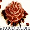 AFIREINSIDE rose