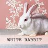 caerbannog: bpal white rabbit