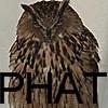phat owl