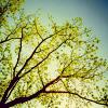ur_sexy userpic