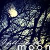 Kathyh: Kathyh moon
