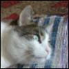 joseph_gal userpic
