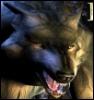 kennywolf360 userpic