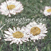 springmod userpic