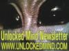 unlocked_mind_8 userpic