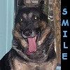 Baloo - Smile