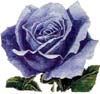 blue_rose_sama userpic