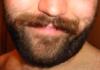 sweet moustache