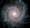 Daniel Savio: Spiral Galaxy