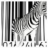 christine444: Zebra