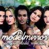 ModelMirror
