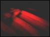 ib1smile userpic