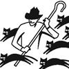 cat herder herding cats