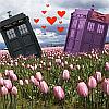 TARDIS, love