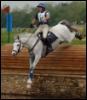 sporthorse_girl