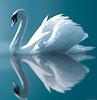 nilechorwen userpic